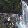 68795_CarrieUnderwood12072009PlayingWithDolphinsintheBahamas03_122_145lo.jpg